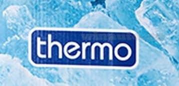 Компания Thermo