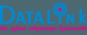 Компания Data Link