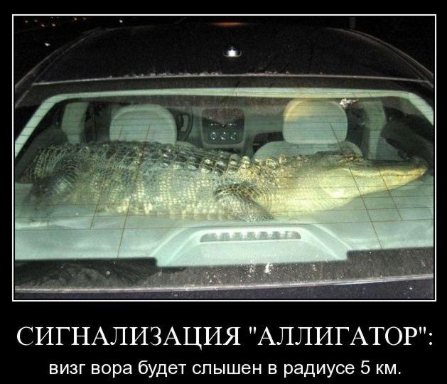 Аллигатор - автосигнализация